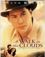 漫步在雲端